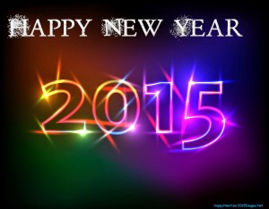 New year 2015 - just the beginning!