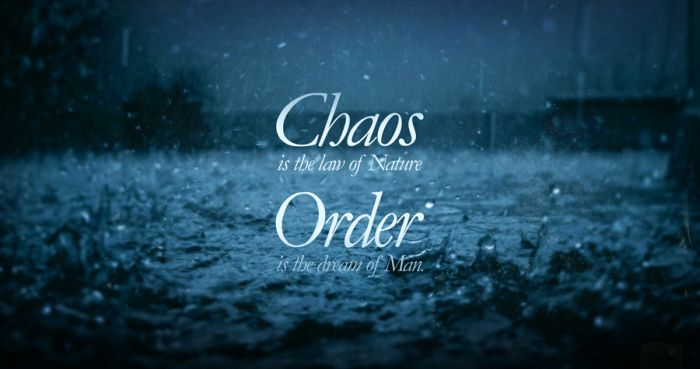 A chaos and an order – everywhere we see!