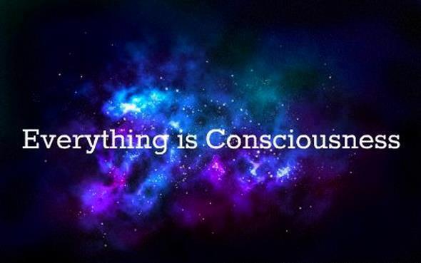 Consciousness as a Development Indicator